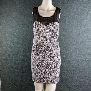 """Last Chance! Cat Print & Mesh Mini-Dress """"Dots"""""""